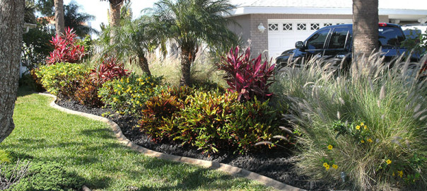 Benefits Of Planting Shrubs In Your Landscape Oasis Palms Landscaping